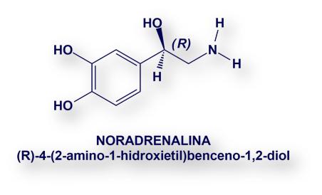 Adrenalina Su Historia Info Farmacia